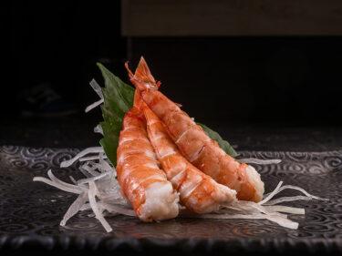 Ebi sashimi