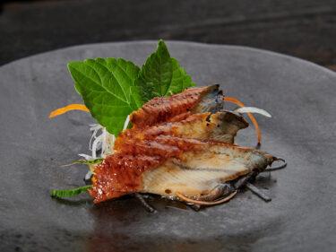 Unagi sashimi