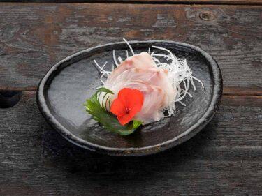 Seabass sashimi